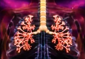 Дыхание человека - хочу знать больше