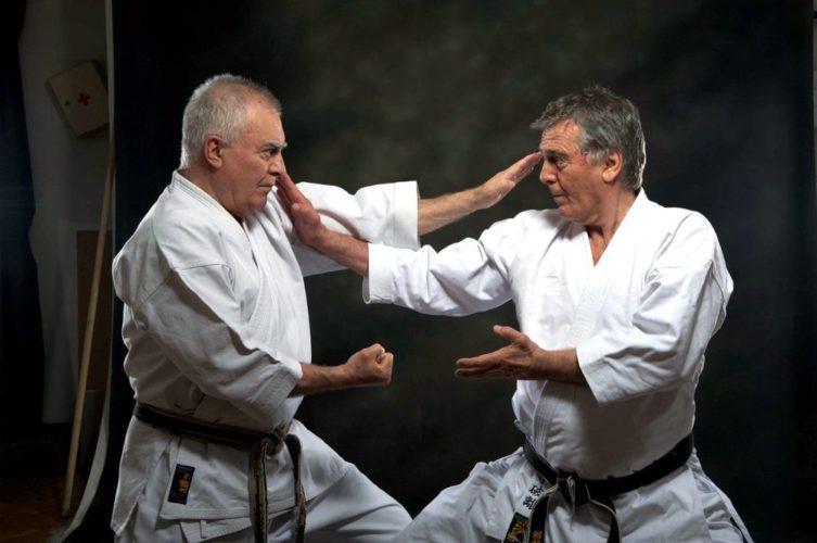 Каратэ Фудокан: семинары по Каратэ Фудокан Илья Йорга