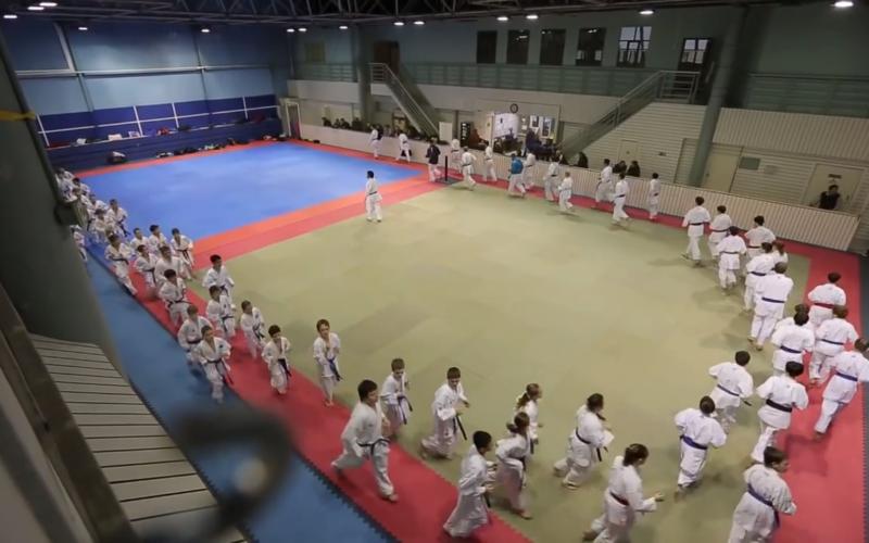 ramenki team karate moscow